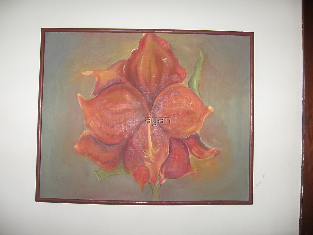 flower Size 41x52 cm by ayan