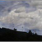 The Wind Farm by Wayne King