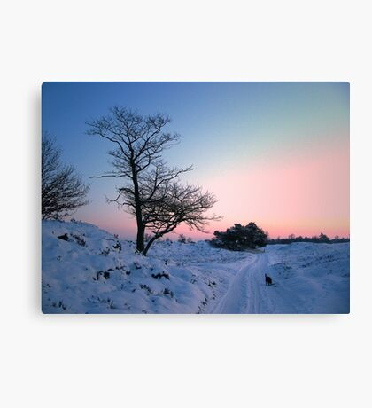 Walking in the snow landscape Canvas Print