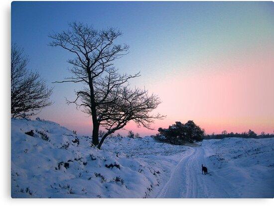 Walking in the snow landscape by ienemien