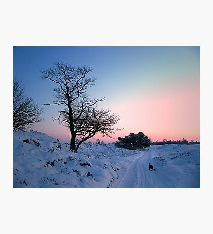Walking in the snow landscape Photographic Print