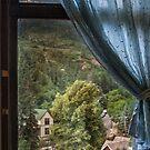 Window View by John  Kapusta