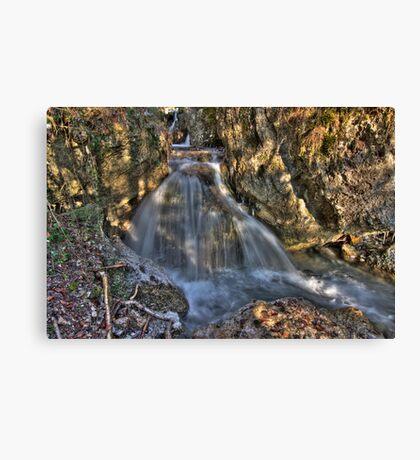 Streamline Canvas Print