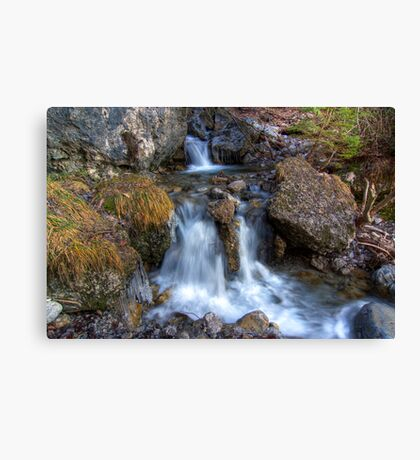 Parting Waters Canvas Print