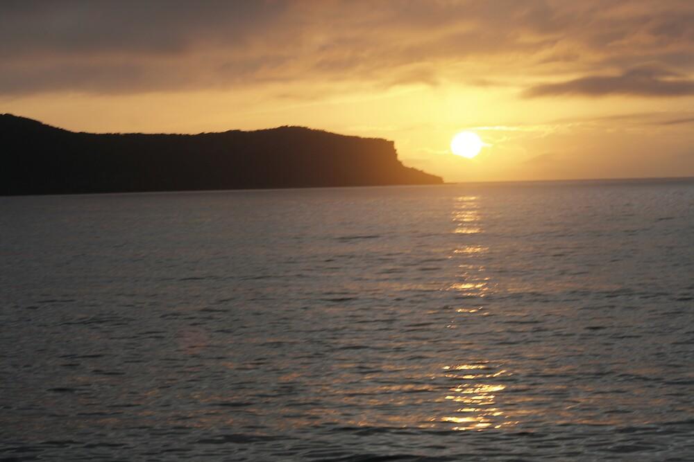 sunrise at woy woy 2 by veins