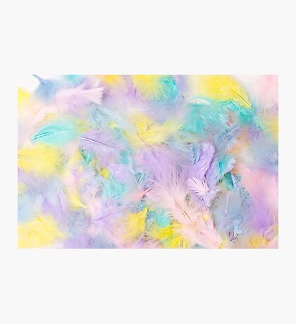 Pastel Feathers  Photographic Print