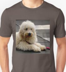 See My New Paw-dicure? Unisex T-Shirt