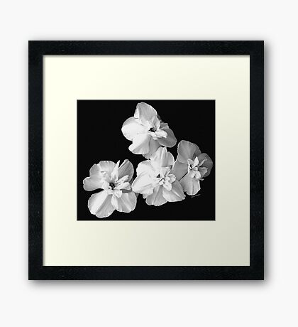 White on Black Framed Print
