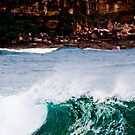 Whale Beach #1 by MikeBJ