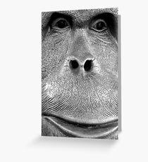 a model orang-utan Greeting Card