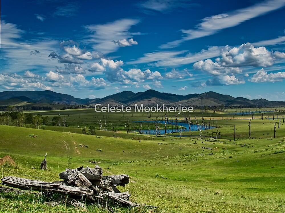 Kilcoy view by Celeste Mookherjee