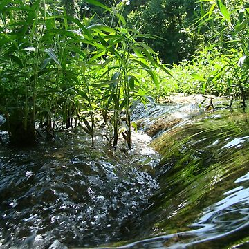 Flowing Creek~ by virginian