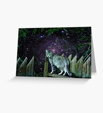 Twilight Cat~ Greeting Card