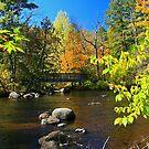 A River Runs Through It by Tim Denny