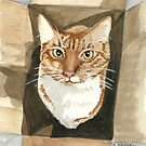 Cat In The Box - Watercolor by skidgelstudios
