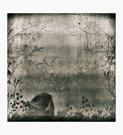 The Mind Is A Thicket Photographic Print