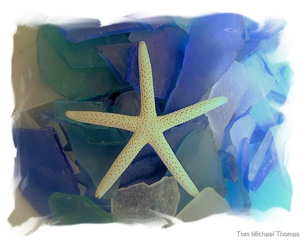 Coastal Star by Tom Michael Thomas