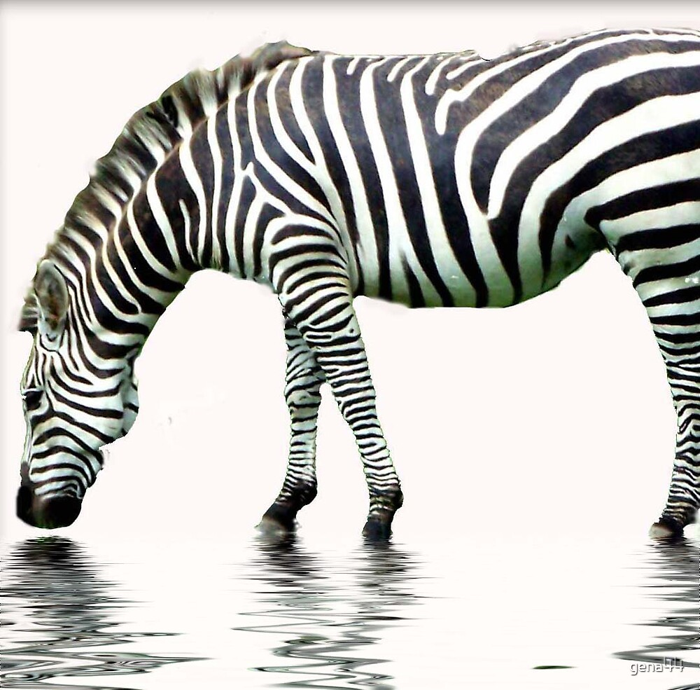 Stripes 2 by gena44