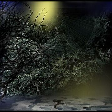 Twilights Hush by maggiebarra