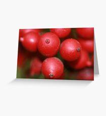 Red Ripe Greeting Card