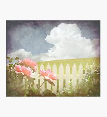 Spring Welcome Rose Photographic Print