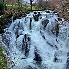 Swallow Falls : North Wales : UK by AnnDixon