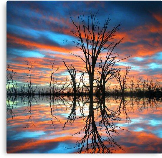 Tree Lake Sunset by Annette Blattman