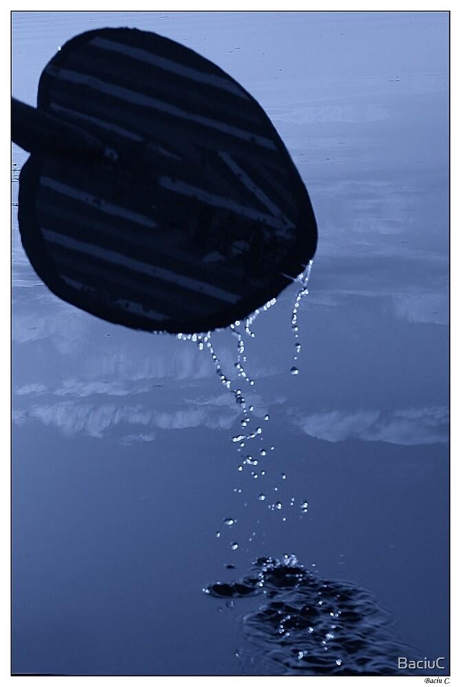 River Blues by BaciuC