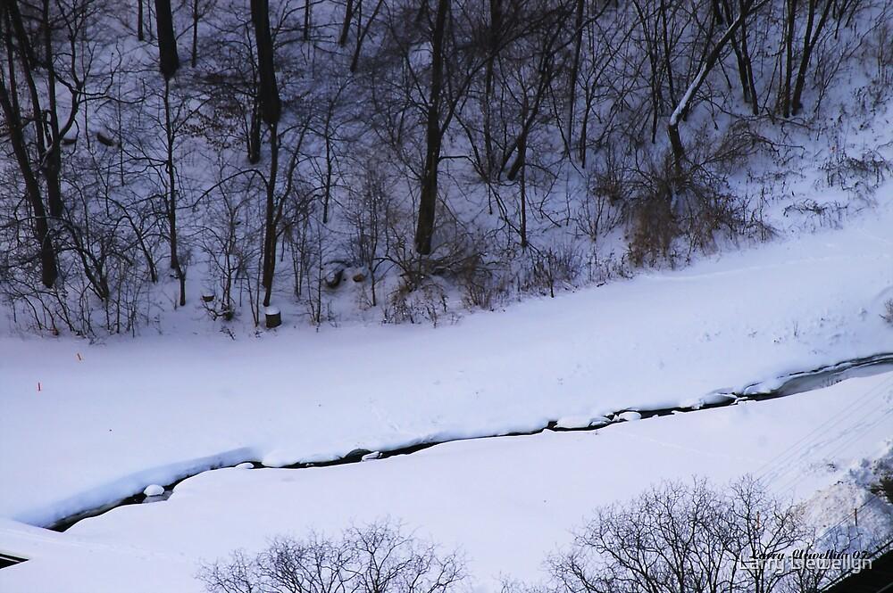 A Winter Stream by Larry Llewellyn