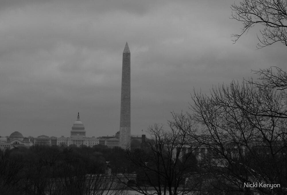 Washington on a cloudy day by Nicki Kenyon