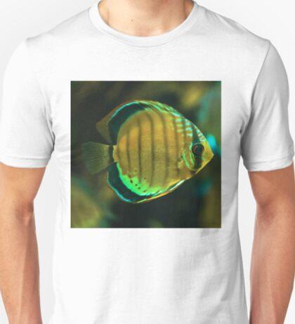 A fish T-Shirt