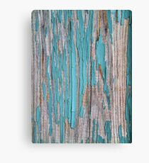 Shabby rustic weathered wood turquoise Canvas Print