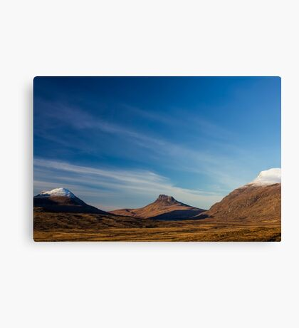 Stac Polly Canvas Print