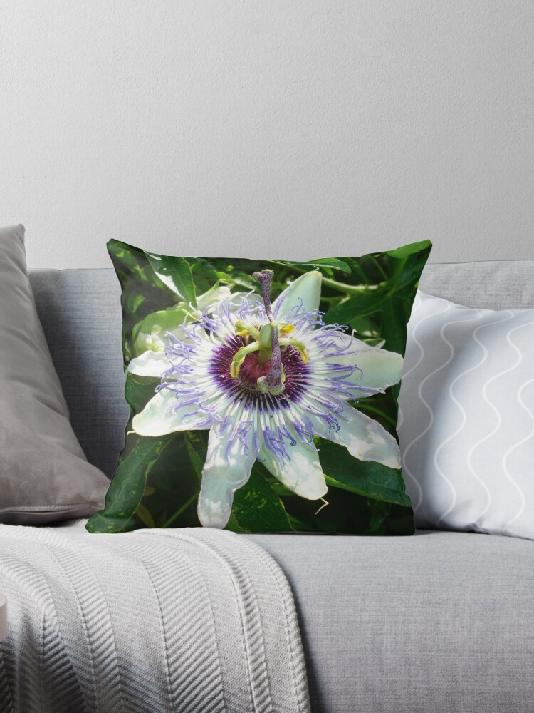 Beautiful Passion Flower With Garden Background by taiche