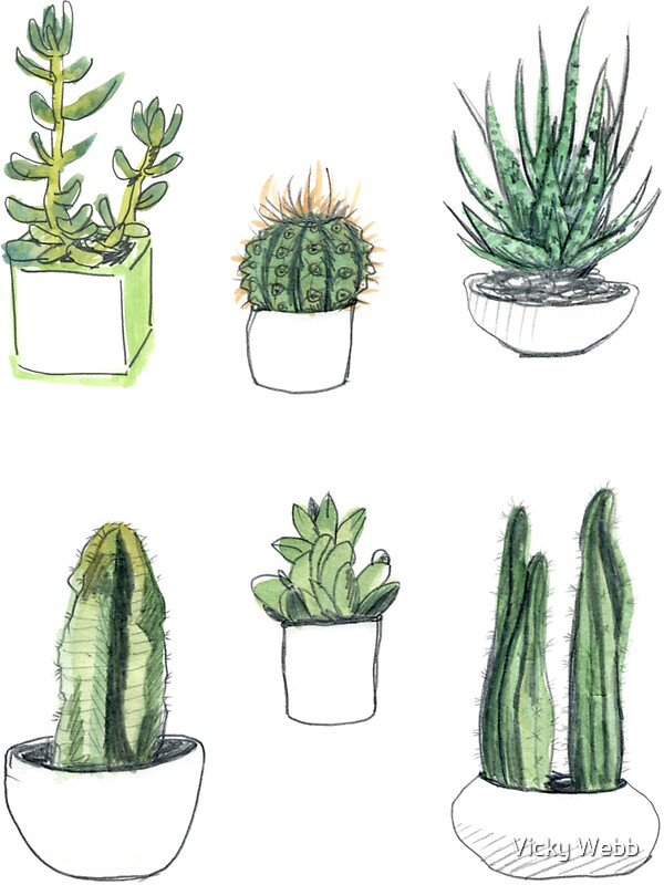 Quot Watercolour Cacti Amp Succulents Quot Stickers By Vicky Webb