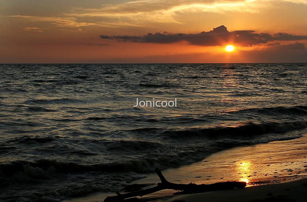 Driftwood Sunset 2 by Jonicool
