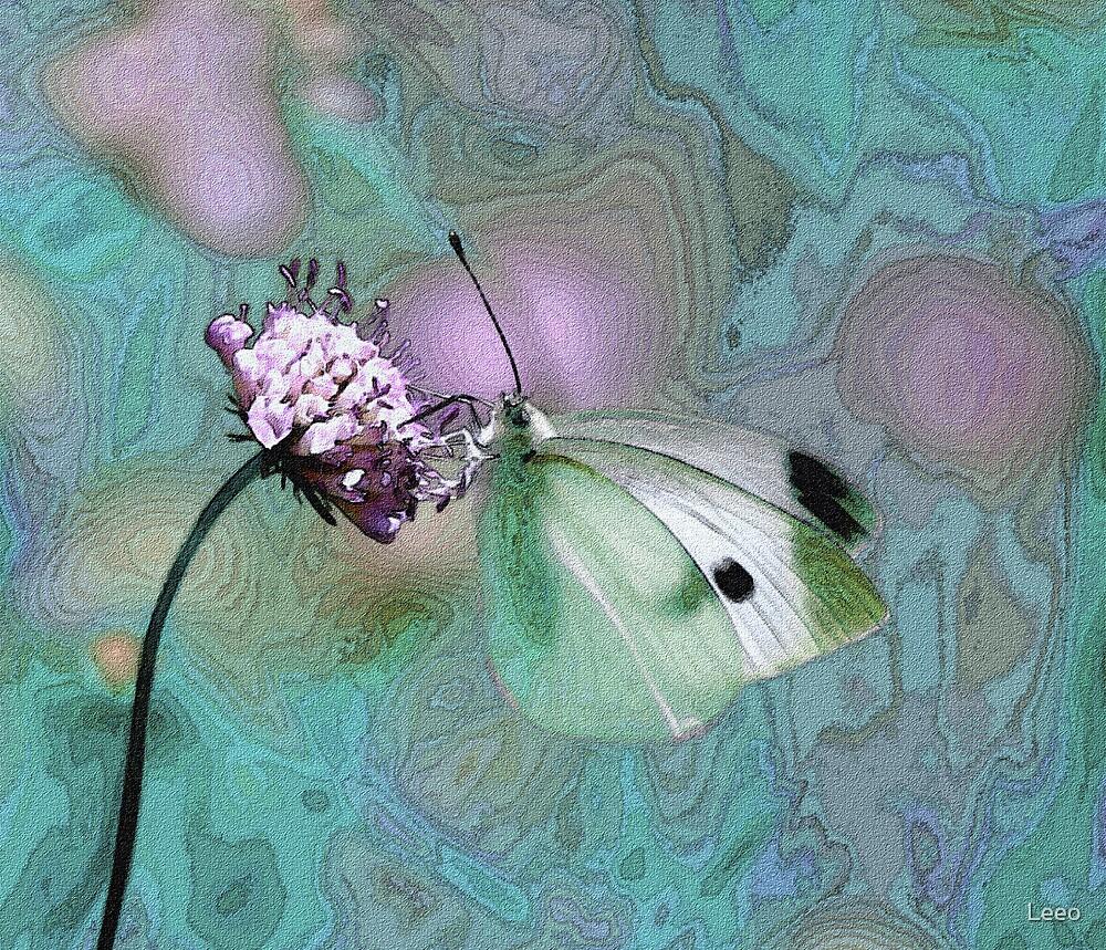 Butterfly Dreams by Leeo