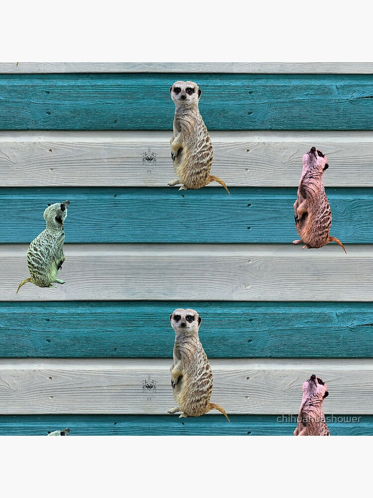 Meercat Stripes by chihuahuashower