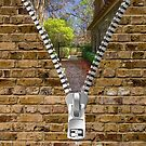 Behind the Brick Wall by TJ Baccari Photography