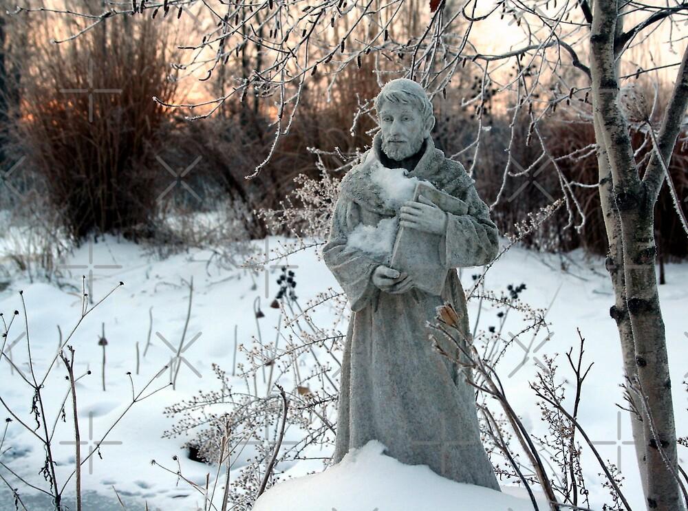 Saint Francis by mikrin