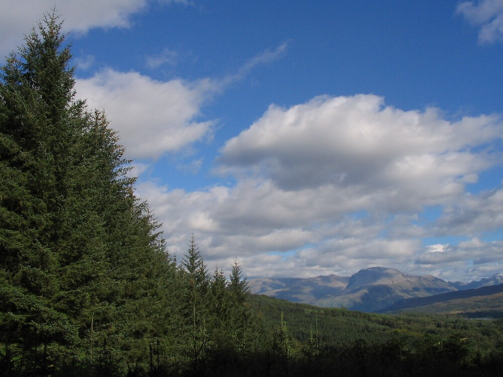 View over the forests of Scotland by nybo
