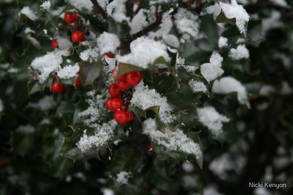First snow by Nicki Kenyon