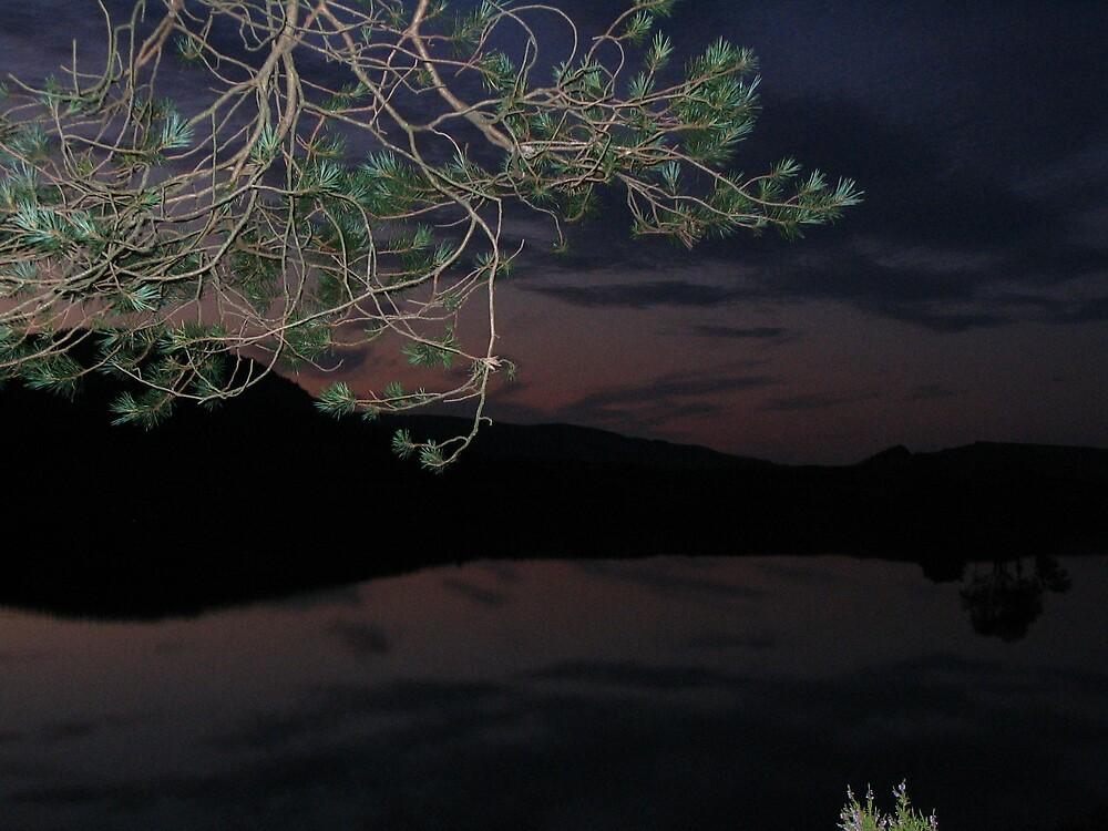 Night sky over the lake by nybo
