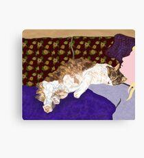 Sleeping Indigo Kitty  Canvas Print