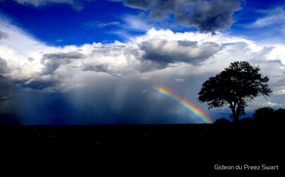 rainbow by Gideon du Preez Swart