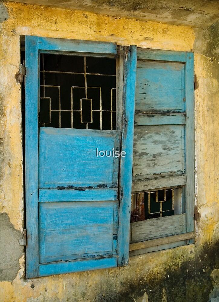 blue window by louise
