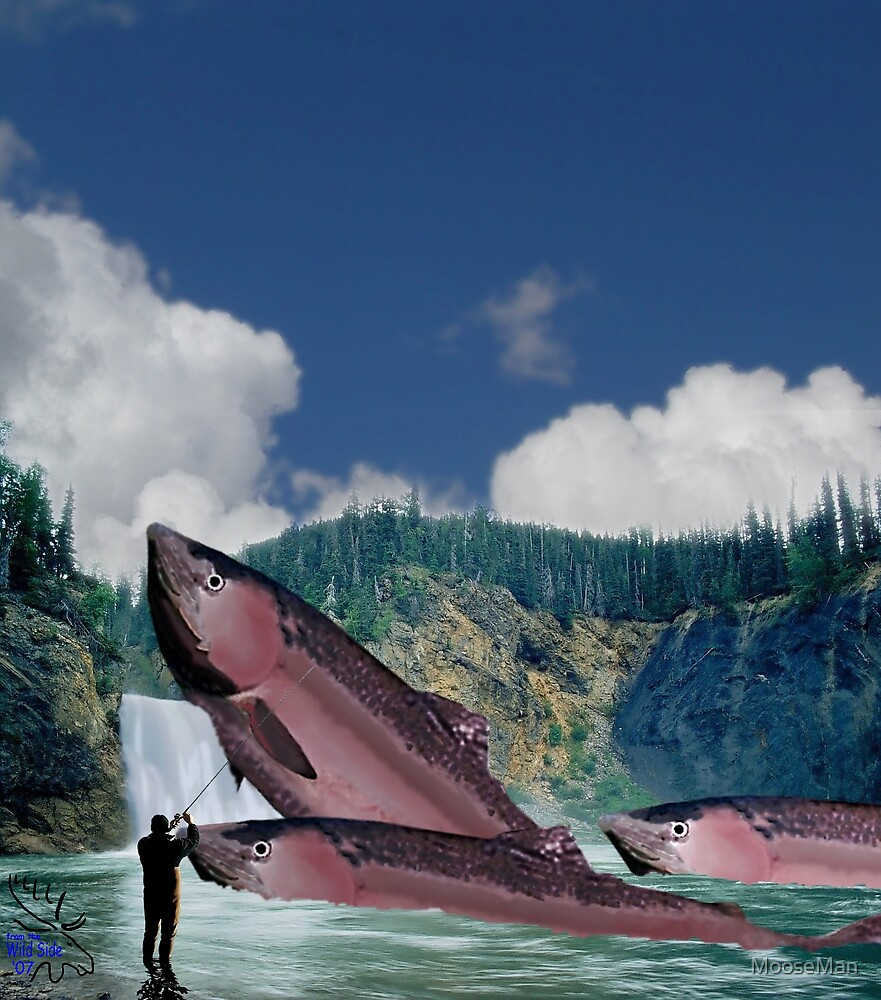 Canadian Salmon blocked by waterfall by MooseMan