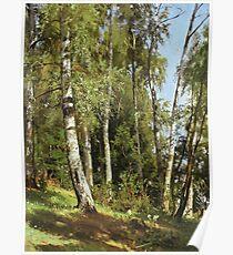Ivan Shishkin - Birch Grove Poster