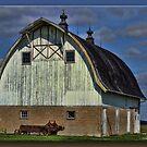 Jasper County Barn by Sheryl Gerhard