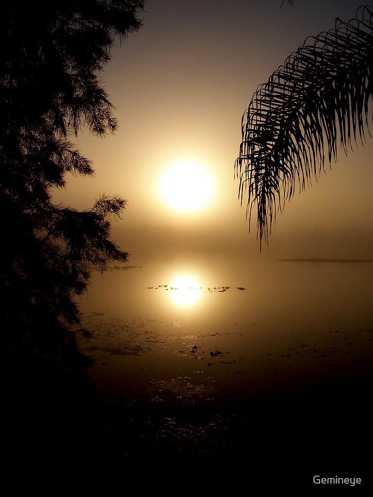 A Foggy Florida Morning by Gemineye